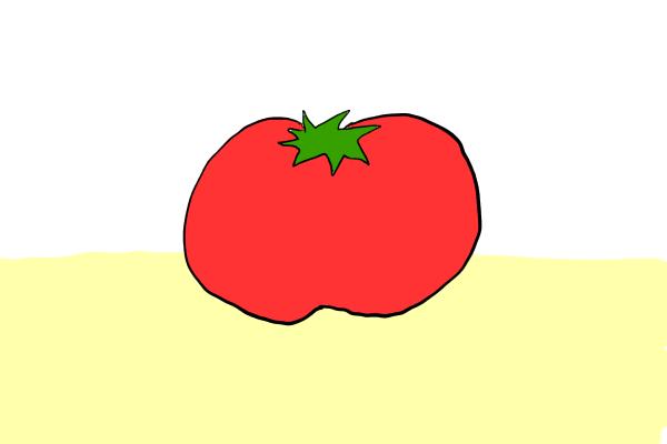 トマト 加工品 大量消費 トマト缶 トマトピューレ トマトペースト 違い